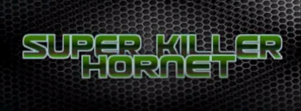 GET A FREE SUPER KILLER HORNET: RESURRECTION STEAM KEY!